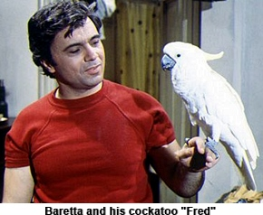 Baretta tv show theme song lyrics