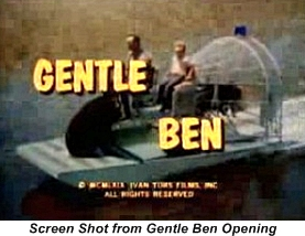 Dennis Weaver in Gentle Ben