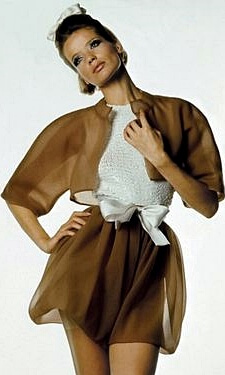 1960s fashion moddel Veruschka